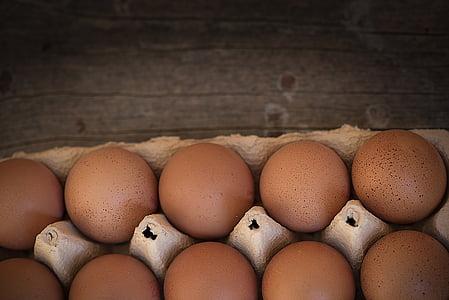 ou, ous de gallina, ouera, grup, aliments, Nutrició, ouera