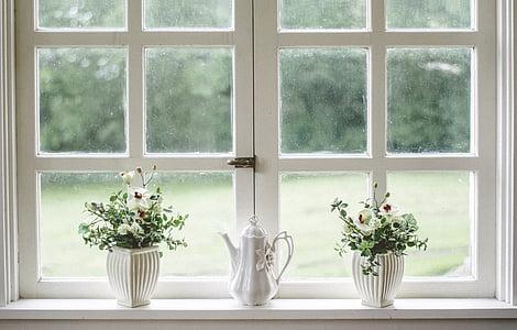 white, window, glass, shield, frame, flower, vase