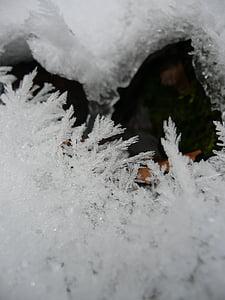 ice, eiskristalle, winter, frozen, crystals, hardest, snow