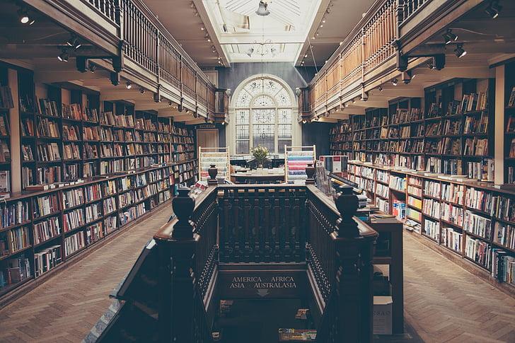 bibliotek, böcker, utbildning, litteratur, skolan, kunskap, studera
