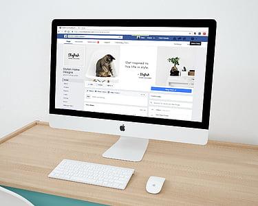 Veebidisain, Facebook, Facebook leht, väikeettevõte, äri, Web, disain