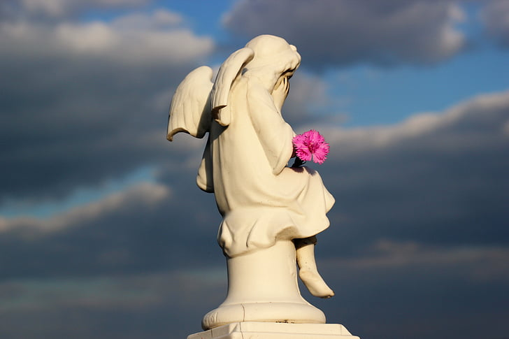little angel, crying, pink carnation, dramatic sky