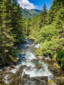 cascadă, Munţii, fluxul, apa, pădure, alb de apă, râu de munte