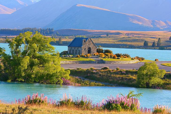 lake tekapo, new zealand, church, nature, church of the good shepherd, morning