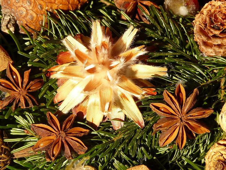 Corona d'Advent, llavors, adorn, llavor de plata, flors seques, decoració, leucospermum