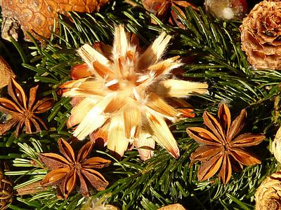 Couronne de l'Avent, graines, ornement, graine de l'argent, fleurs séchées, décoration, Leucospermum