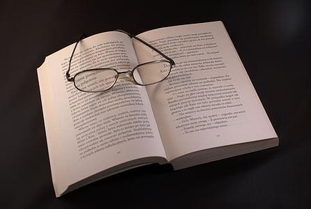 llibre, ulleres, lectura, vacances