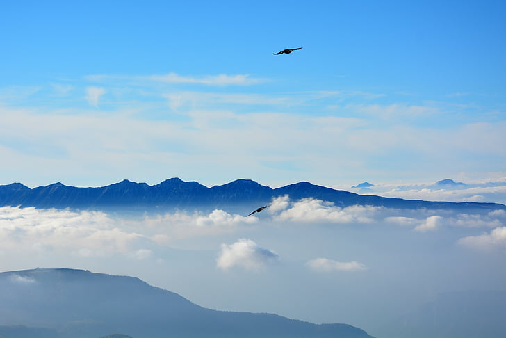 лети, облаците, планини, небе, птица, природата, планински