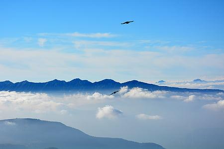 volar, núvols, muntanyes, cel, ocell, natura, muntanya