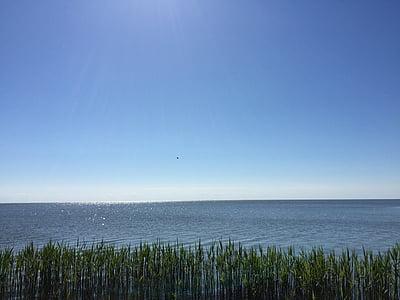 Nida, Lituanie, eau, océan, plage, été, nature