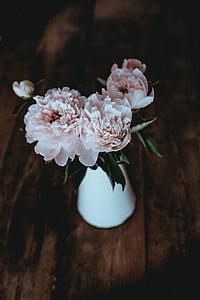 dřevěný, tabulka, květ, váza, interiér, Zobrazit, Příroda