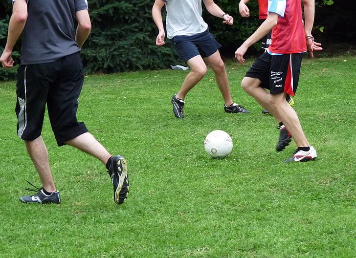 football, ball, sport, footballers, football player, ball sports, training