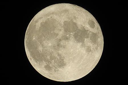 Lluna plena súper 2016, Lluna, dolor, Luna, Lluna de la terra, cos celeste, llum de lluna