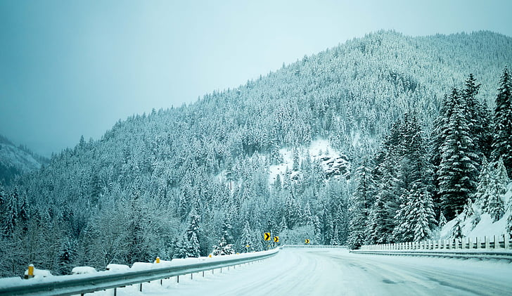 nature, snow, winter, trees, woods, forest, road