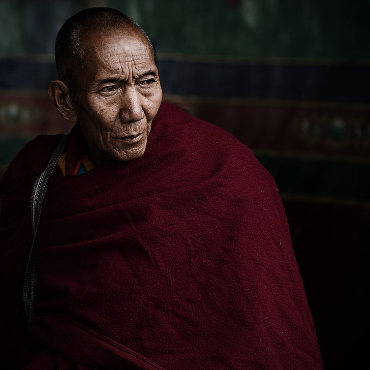 lama, tibet, vicissitudes, old monk, china, one man only, mature adult