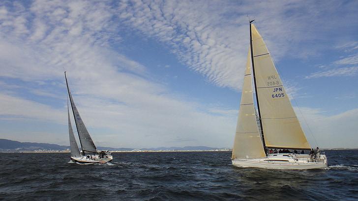 segling, Yacht, kappsegling, havet, vind, segel, Sky