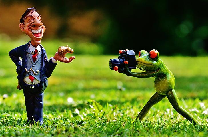 businessman, photo shoot, winner, photograph, man, frog, photographer