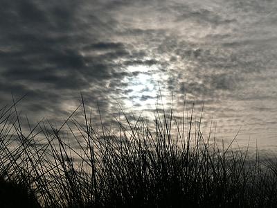 seaside, himmelen, månen, skyer, lysrefleksjoner, natur, kveld
