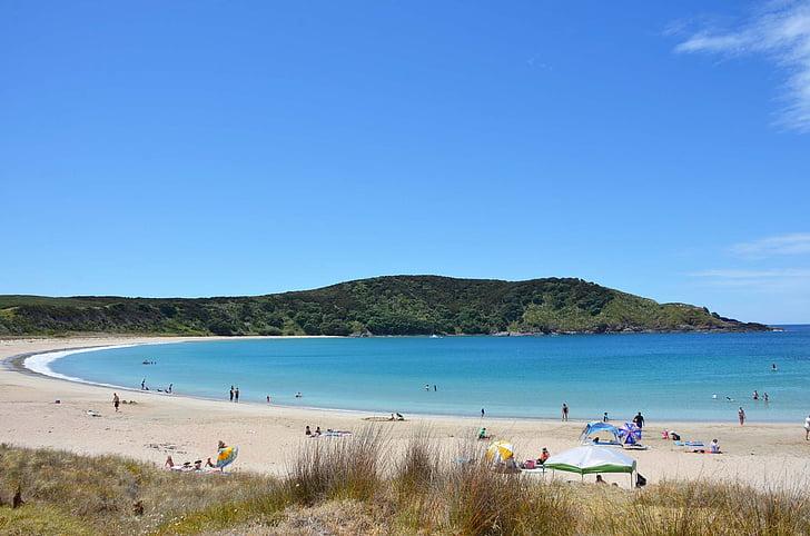 new zealand, seaside, sandy beach