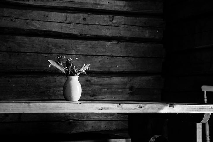 lily of the valley, black and white, old house, white, black, nature, bouquet