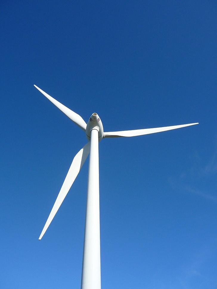 Tuul, turbiini, tuuliku, elektriline, võimsus, elektri, energia