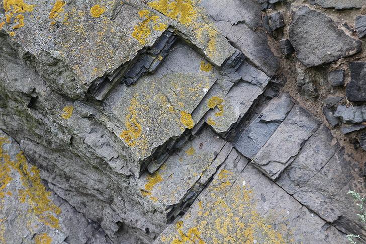 pedra, textura, fons, molsa, resistit
