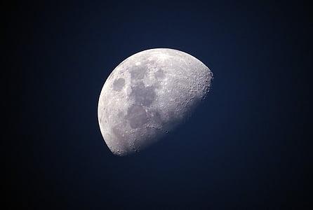 Lluna, blau, cel, univers, celestial, lunar, brillant