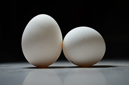 ous, ou, Setmana Santa, blanc, de pollastres, enfocament, BW