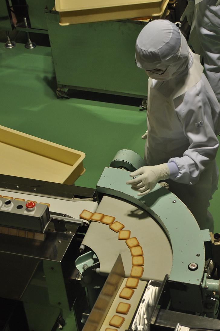 conveyor, japan, hokkaido, cloth, worker, factory