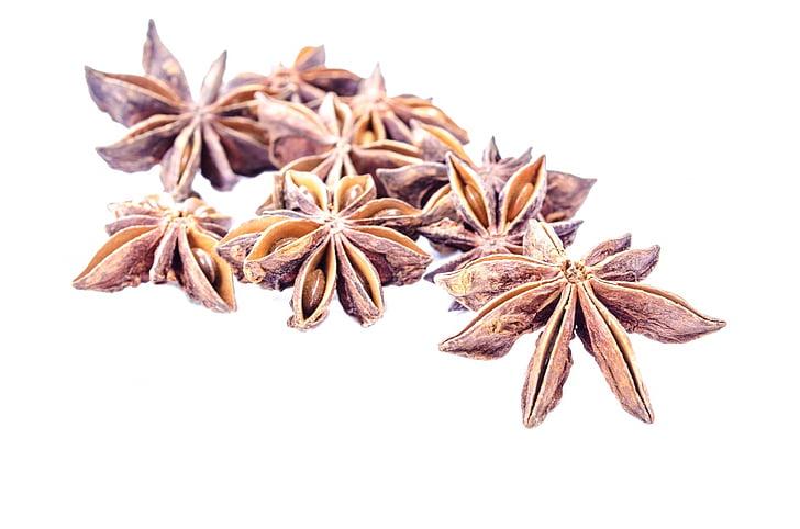 aniis, valge, isoleeritud, looduslik, Paljud, Spice, seemned