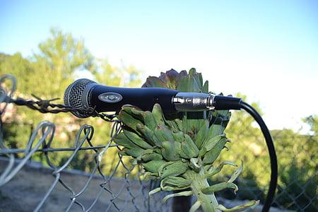 microphone, artichoke, nature, technology