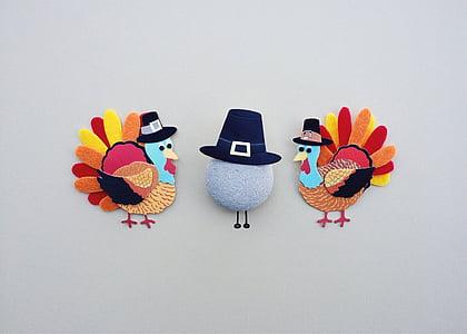 acció de gràcies, Turquia, vacances, sopar, tradicional, tardor, estudi de tir