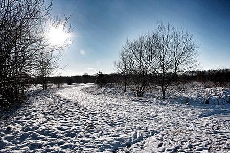 friedrichsfeld, snow, snow landscape, winter, wintry, snowy, winter mood