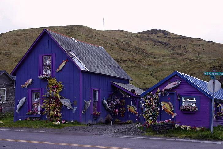 Dutch harbor, Aljaška, hory, dům, Domů Návod k obsluze, fialová, vesnice