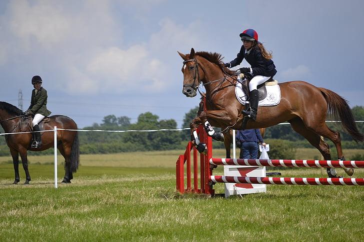 arklys, šokinėja, šuoliai, Jodinėjimas jumping, gyvūnų, šuolis, konkurencijos