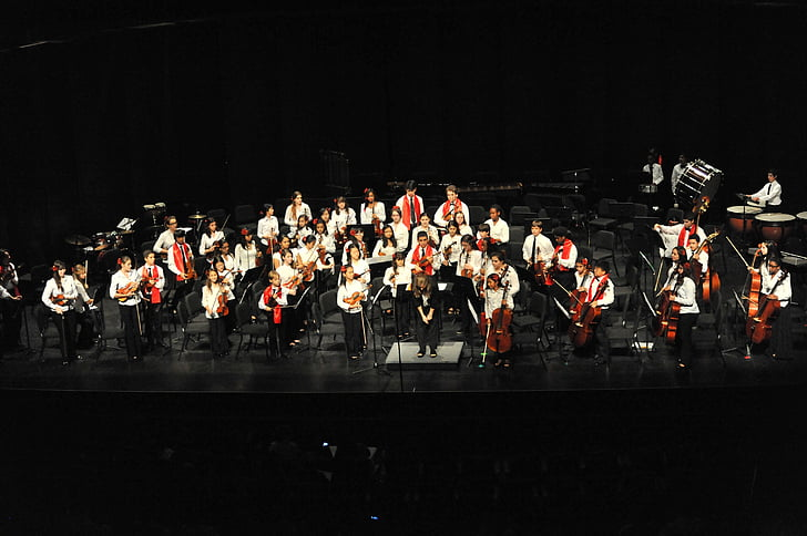 concert, orchestra, music, musical, classical, performance, symphony