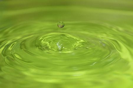 drop, flydende, grøn, vand