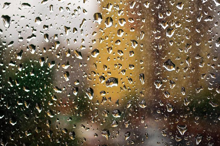 regn, vinduet, glass, våte, regn faller, slipp, gjennomsiktig