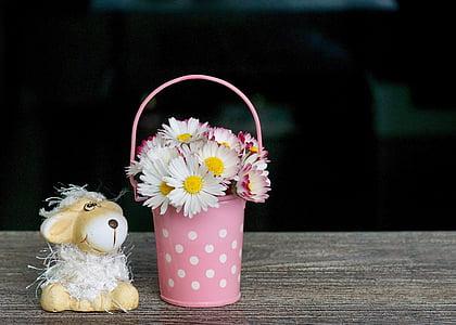 decoració, Margarida, primavera, emoció, sentiments, sort, l'amor