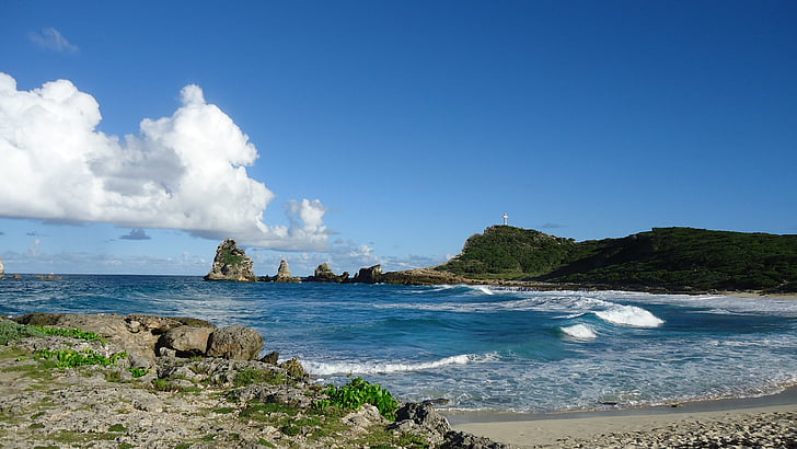 caribbean, sea, sand, island, holiday, caribbean sea, wild