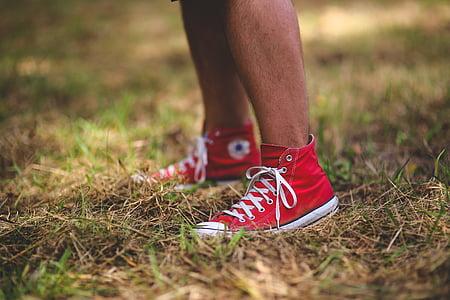 puisis, zēns, vīrietis, čības, Converse, sarkana, kājas