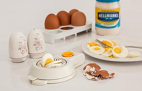 Afinador d'ou, ou, dur bullit, closca, aliments, proteïna, esmorzar