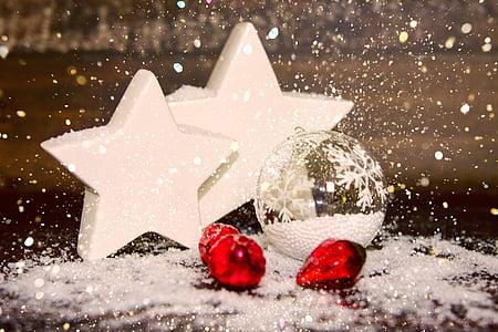 kedatangan, Natal, bintang, dekorasi, Poinsettia, latar belakang, kartu ucapan