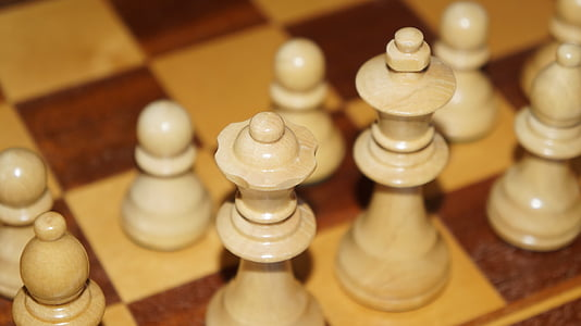 chess game, figures, chess, play, king, chess pieces, white