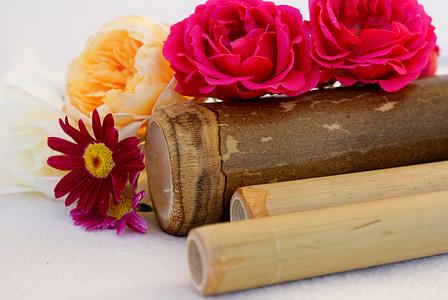 Wellness, Spa, Ole tänatud, ennetamine, Massaaž, bambusest, Bamboo pulgad