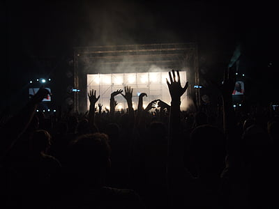 concert, crowd, dance, music, performance, audience, party