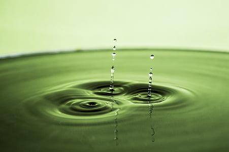 l'aigua, gota d'aigua, plata, líquid, reflexió, ondulació, fresc