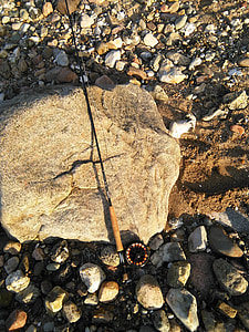 angler, fly rod, stone, coastal, leisure, natural, fly fishing