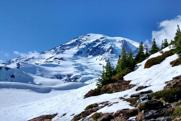 muntanya, Rainier, Washington, paisatge, natura, escèniques, Puig