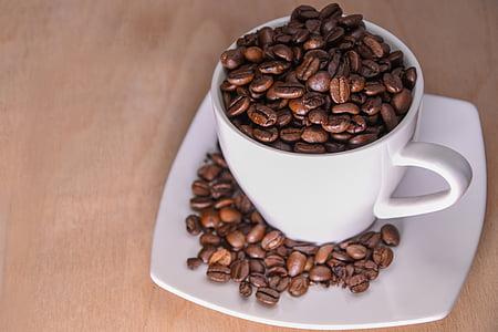 Copa, cafè en gra, cafè, bodegons, gra, orinal, fesol